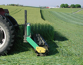 roller crimping small grain cover crop